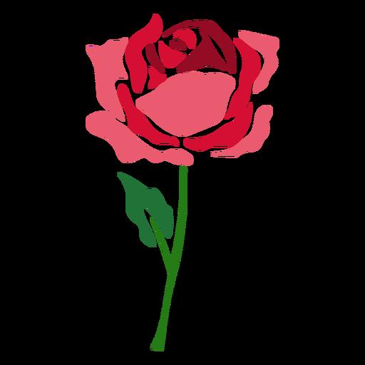 Floração Rosa Flor ícone Baixar Pngsvg Transparente