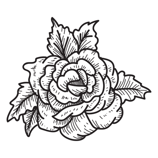 Blooming rose head sketch icon Transparent PNG