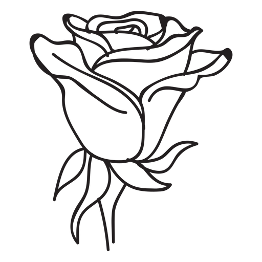 Blooming rose head stroke icon Transparent PNG
