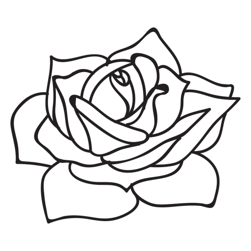 Flowering rose stroke icon Transparent PNG