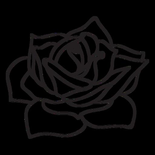 Icono de trazo de rosa floreciente