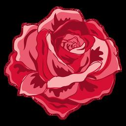 Icono rosa floreciente rojo