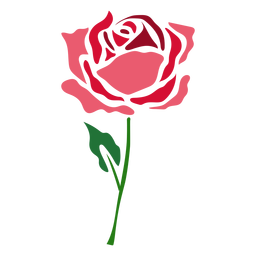 Blooming rose flower icon flower