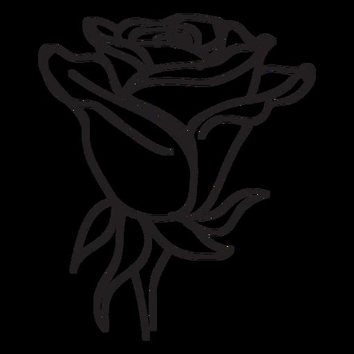 Blooming rose head icono de la flor Transparent PNG