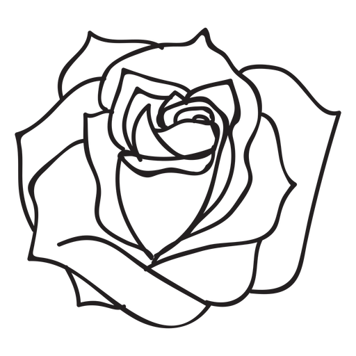 Blooming rose stroke icon flower Transparent PNG