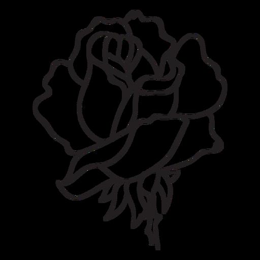 Rose flower head stroke icon - Transparent PNG & SVG vector file