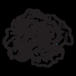 Rose Kopfskizze Symbol