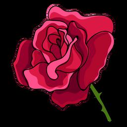 Rose Kopf Wasserfarbe Symbol