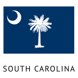 South carolina state flag