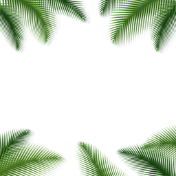 Palm leaves floral background