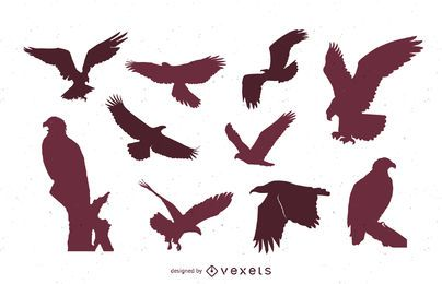 Jogo, de, águia, silhuetas