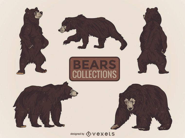 Colección ilustrada de osos salvajes.