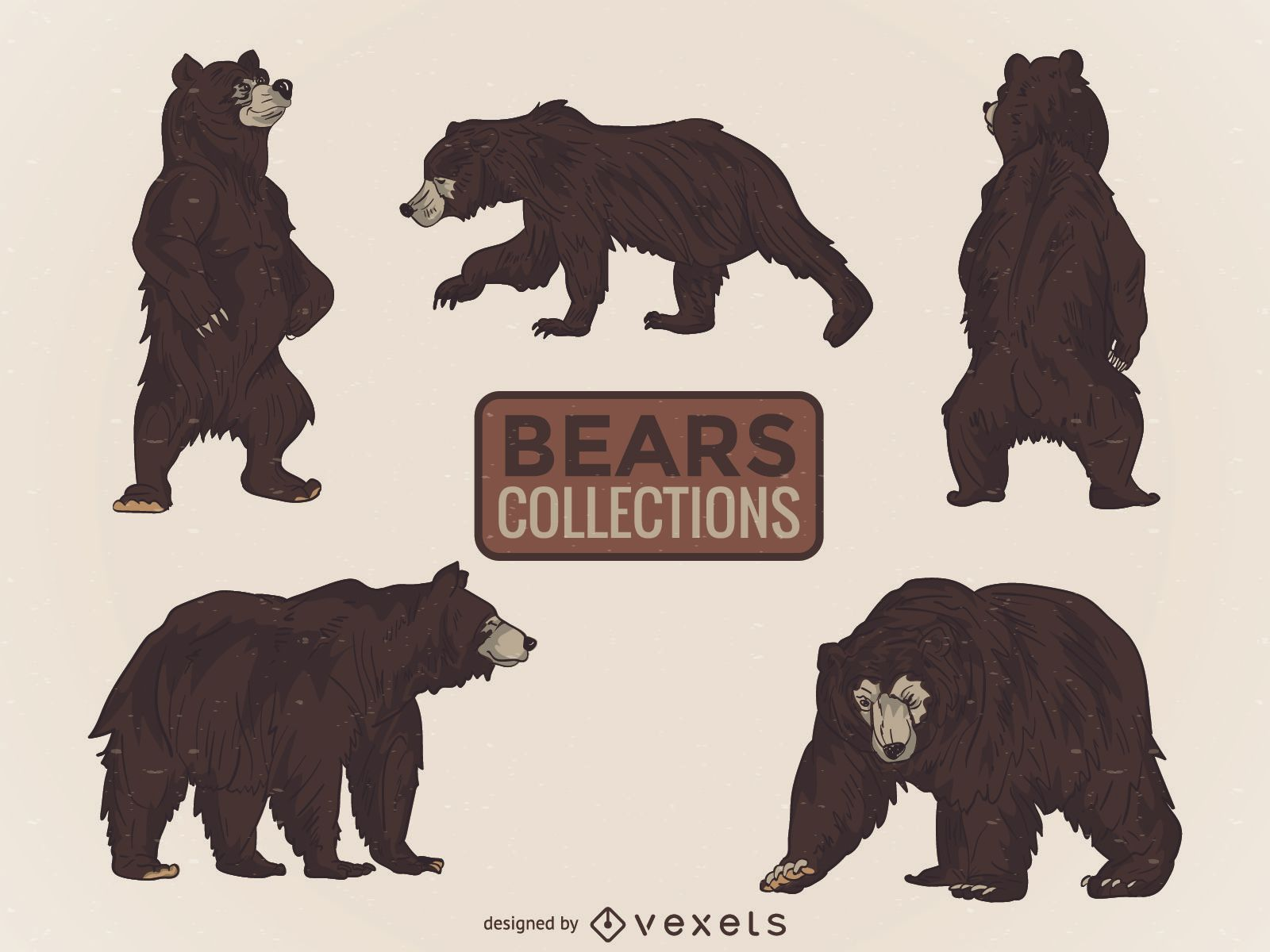 Illustrated wild bear collection