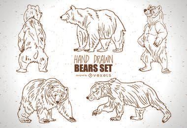 Conjunto de osos dibujados a mano.