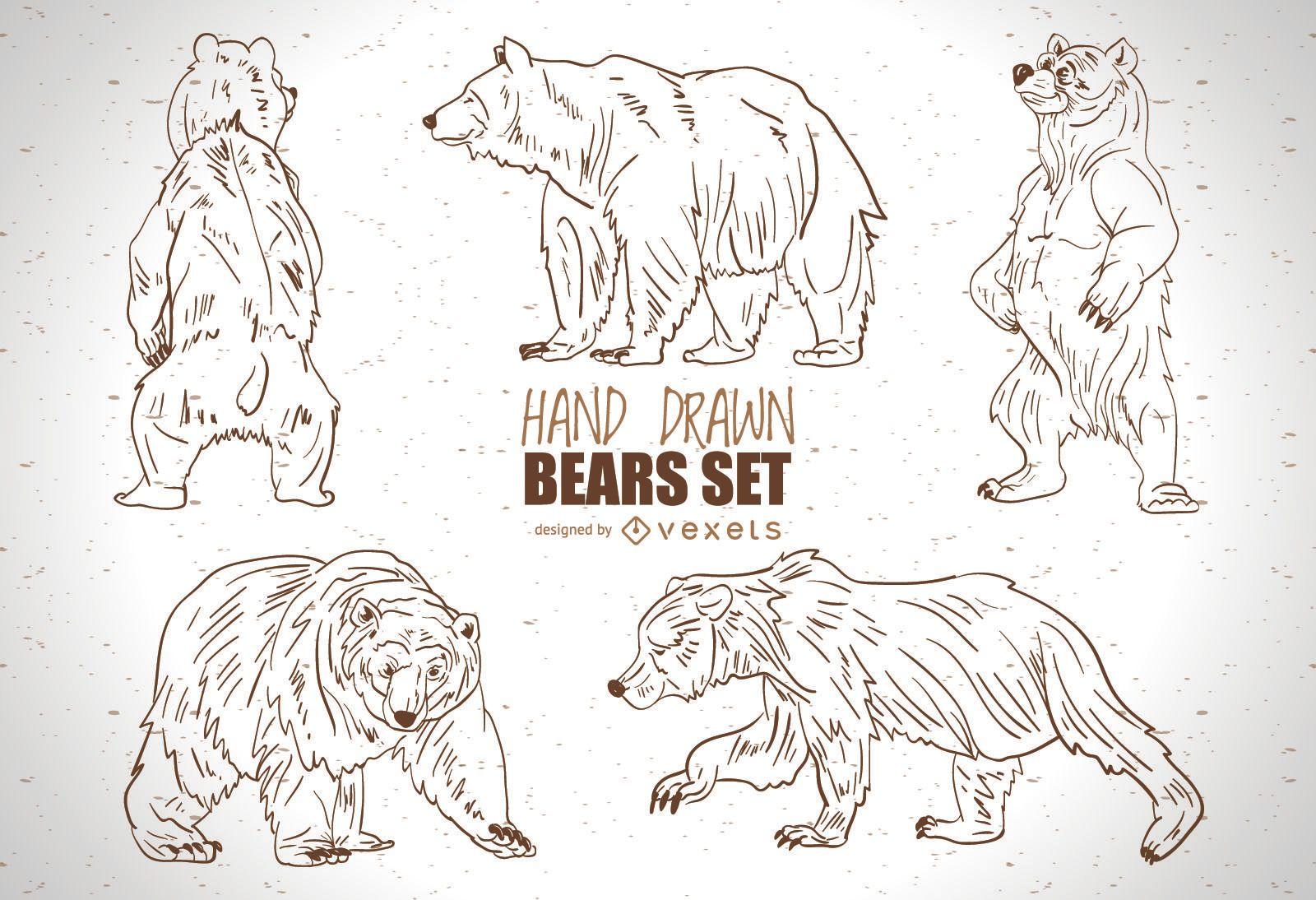 Conjunto de osos dibujados a mano