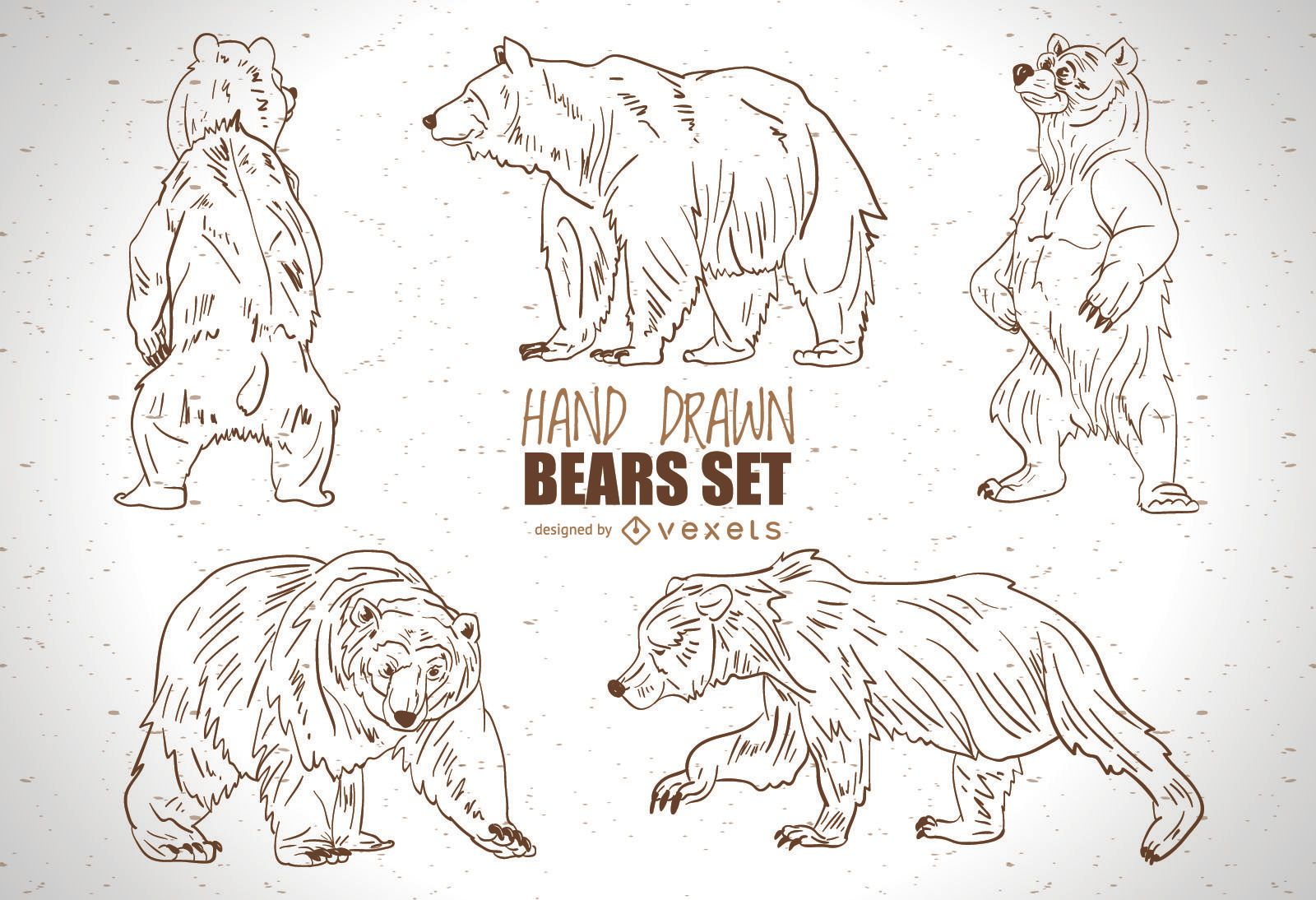 Hand drawn bears set