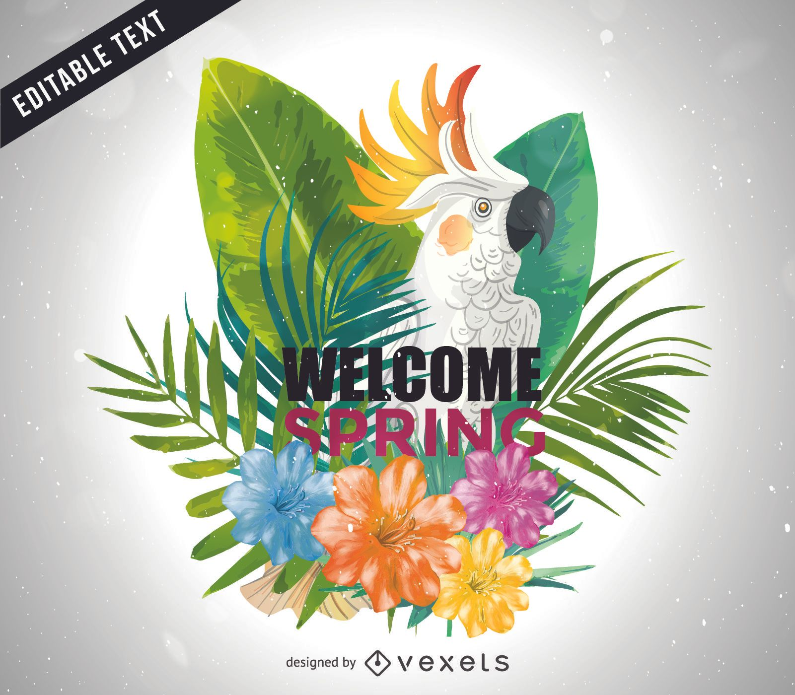 Welcome spring bright cockatoo illustration