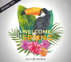 Cartel ilustrado del toucan de la primavera