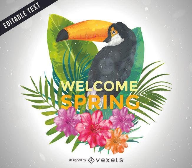 Cartel ilustrado de tucán de primavera.