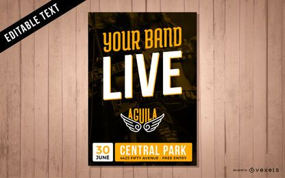 Music band live performance poster