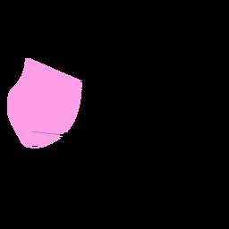 Appenzell innerrhoden canton mapa