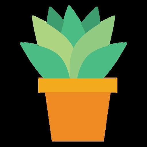 Flowerpot com clipart de cacto Transparent PNG