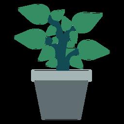 Maceta con imágenes prediseñadas de planta