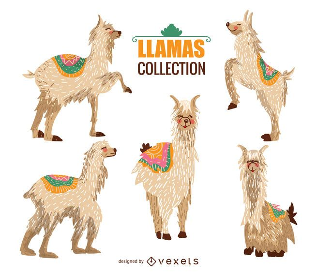 Colección de ilustraciones de llamas