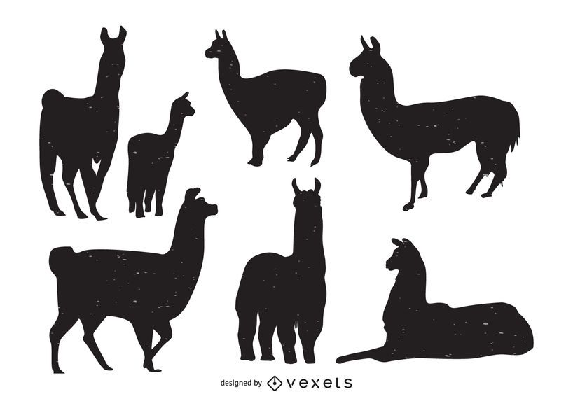Llama animal silhouette collection