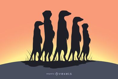 Meerkat family shadow silhouette