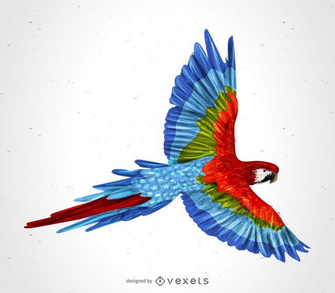 Ilustração de papagaio arara linda
