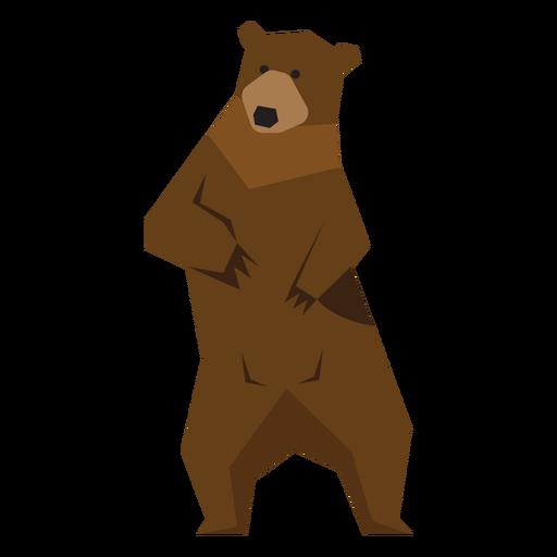 Brown bear standing illustration Transparent PNG