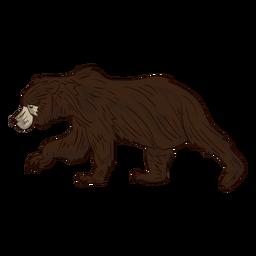 Dibujos animados de caminar oso marrón