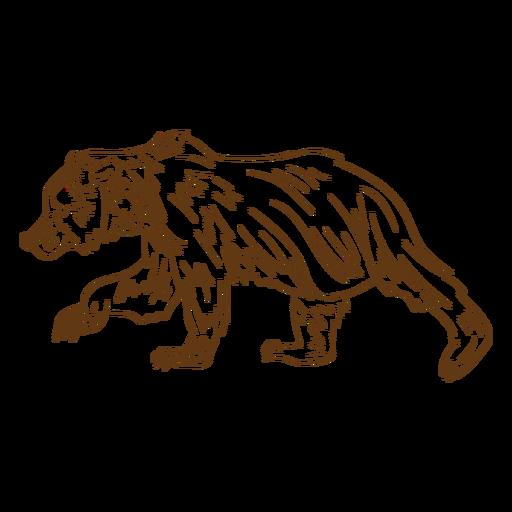 Brown bear walking stroke cartoon Transparent PNG
