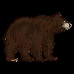Dibujos animados de oso grizzly marrón