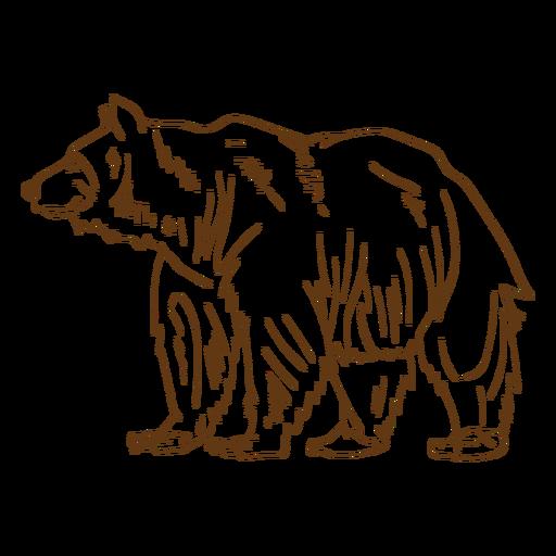 Brown grizzly bear stroke cartoon