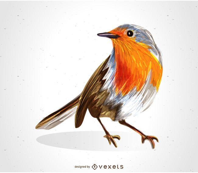 Dibujo de pájaro petirrojo