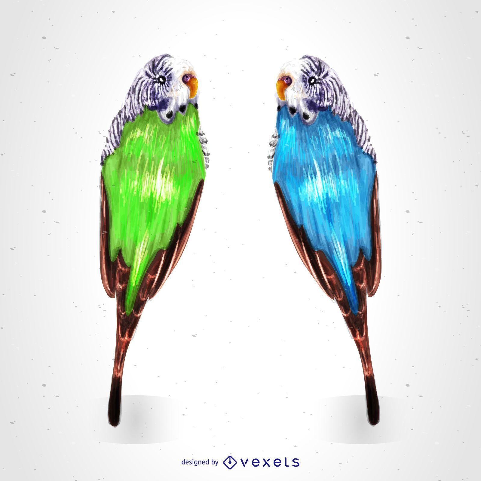 Tropical parrots drawing