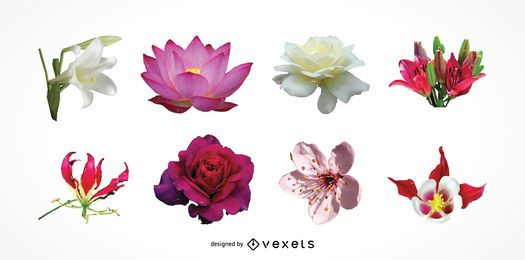 Exotic flowers heads set