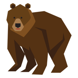 Ilustración del oso pardo anciano