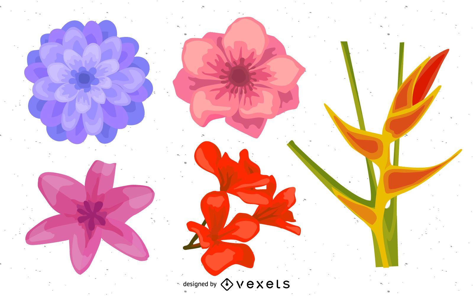 Conjunto de ilustração de lindas flores realistas