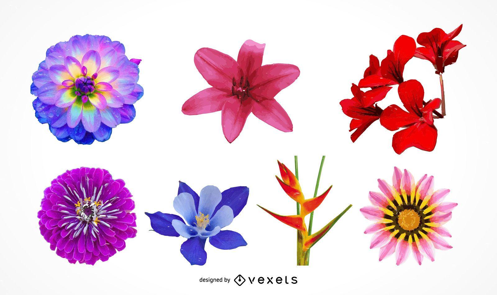Conjunto De Ilustracion De Hermosas Cabezas De Flores Realistas