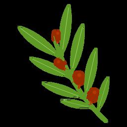 Icono de rama de olivo