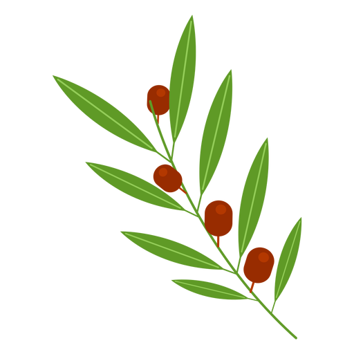 Olive branch icon Transparent PNG