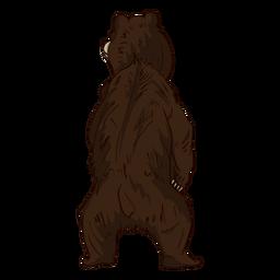 De pie oso vista posterior de dibujos animados