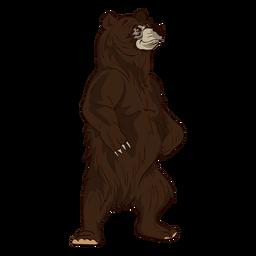 Pie de dibujos animados oso marrón