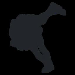 Wrestler takedown silhouette