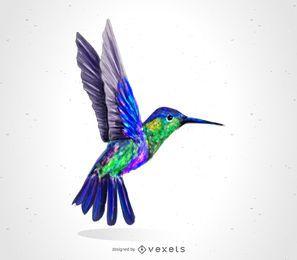 Kolibri-Vogelzeichnung