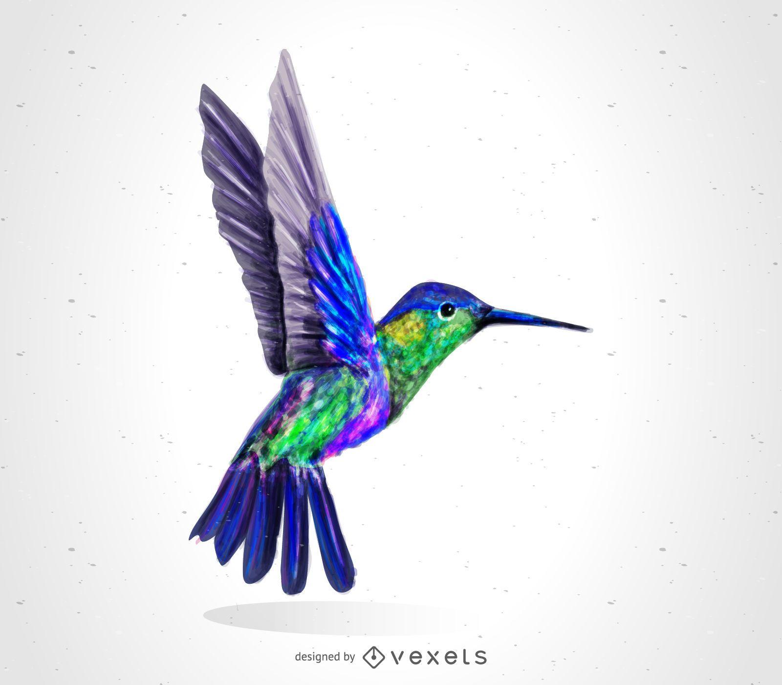 Dibujo de p?jaro colibr?