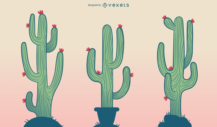 Cactus cartoon illustration set